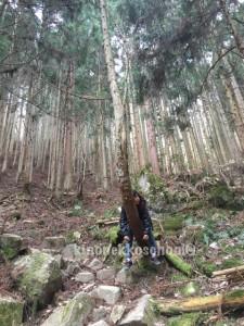 休憩、ではなく、木の声を聞いているらしい。